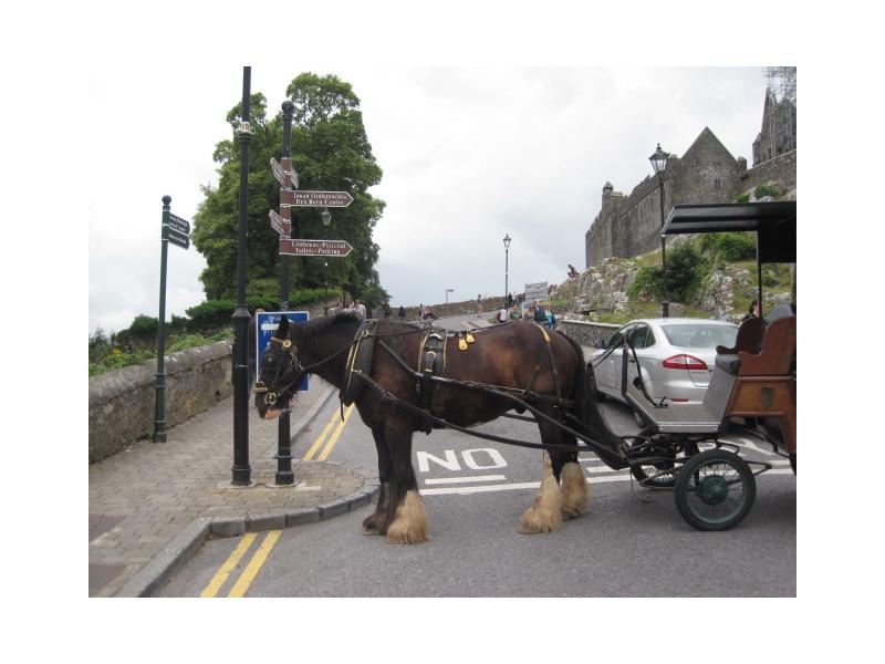 chauffeur-services-ireland-8