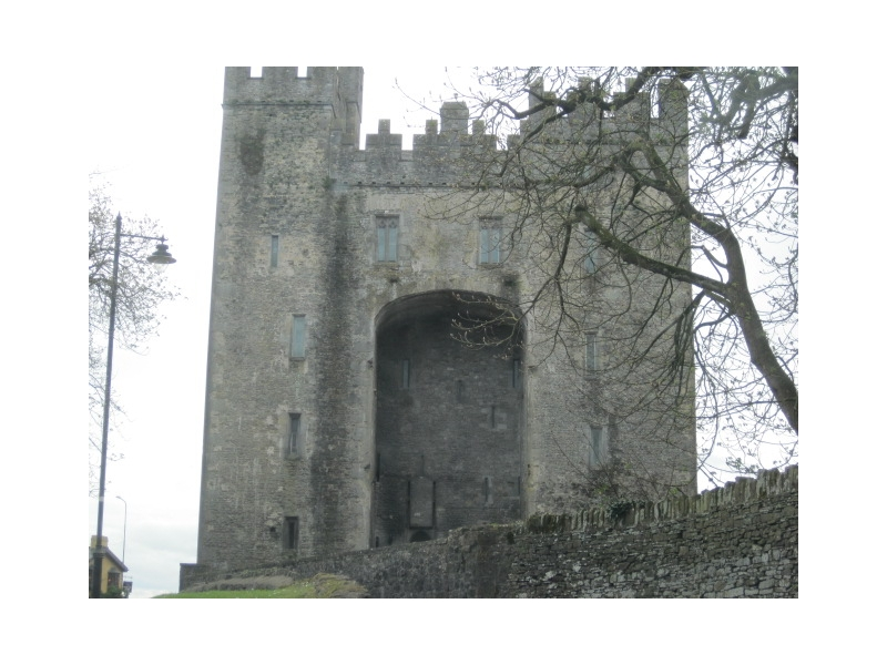 Chauffeur Tour Bunratty Castle