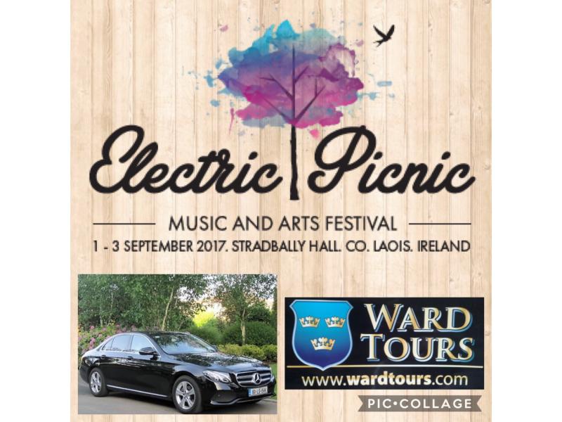 electric-picnic-1